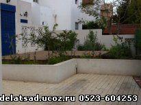 озеленение, садовник, ландшафт, дворик, израиль,